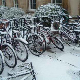 Cambridge-Bikes